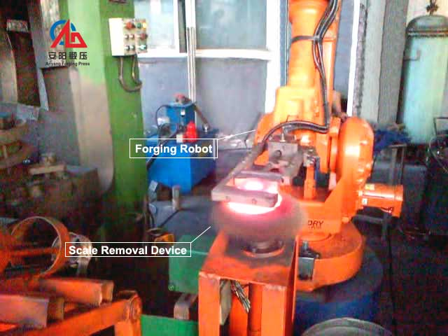 forging robot and scale removal device